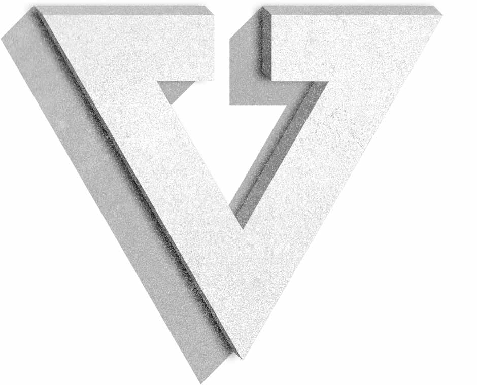 Company - Virtus Srl